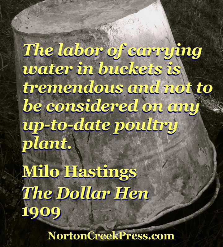 The labor of carrying water in buckets is tremendous and not to be considered on any up-to-date poultry plant. -- Milo Hastings, The Dollar Hen, 1909