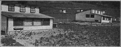 Woods' open-front chicken houses in Pennsylvania.